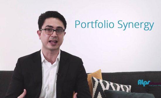 Portfolio Synergy
